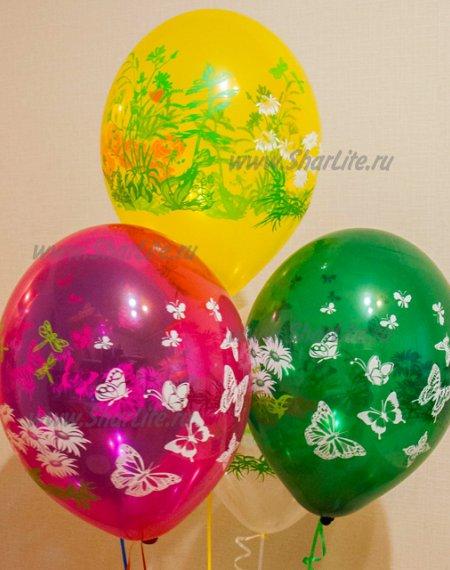 Воздушные шары с цветами и бабочками